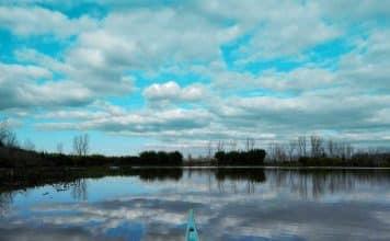Laguna Idahome