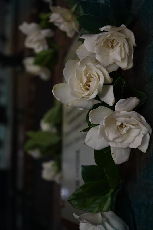 Homenaje a Conrado
