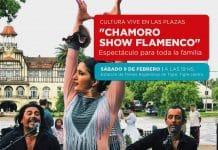 Flamenco Tren