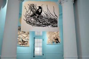 "Muestra ""Delta"" @ Casa de las Culturas Villa del Carmen | Tigre | Buenos Aires | Argentina"