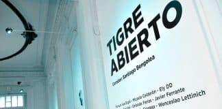 Tigre Abierto