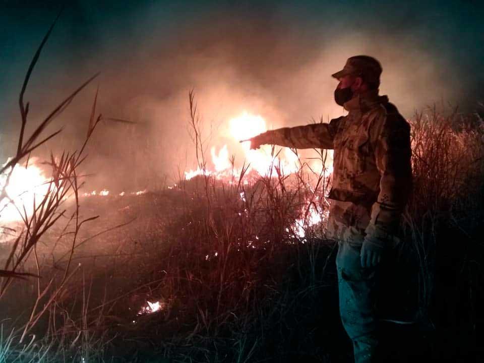 Incendios en el Delta