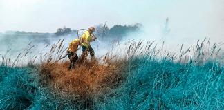 -terrenos-de-incendios